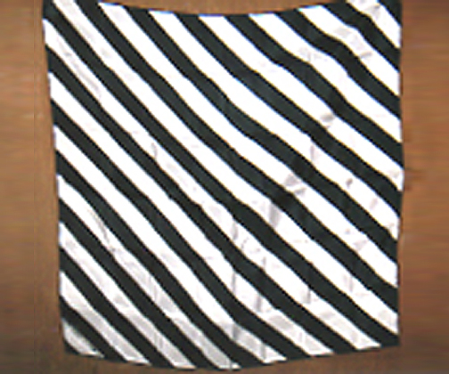 "18"" Zebra Silk ( Black & White ) - China"